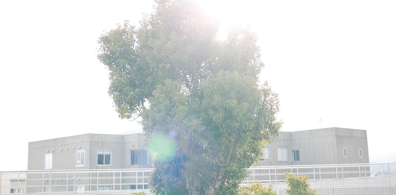 Seian University Of Art And Design