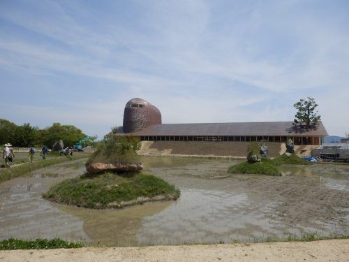 水田の奥には、建築家藤森照信氏の設計による間も無く完成するたねや本社屋